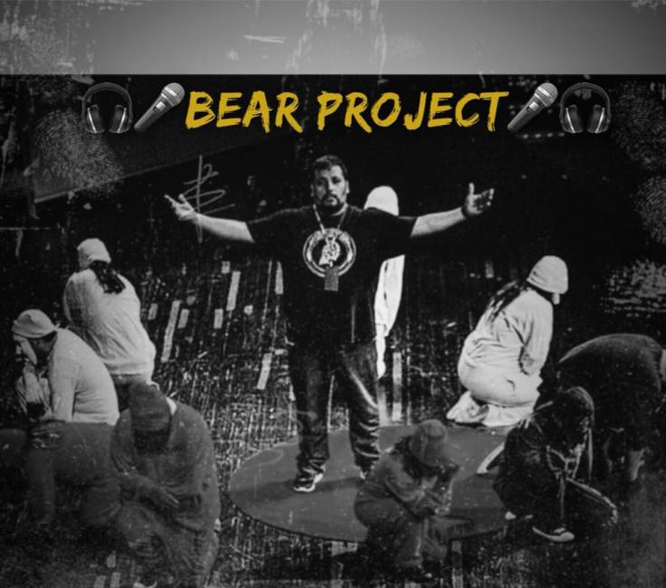 bear project art